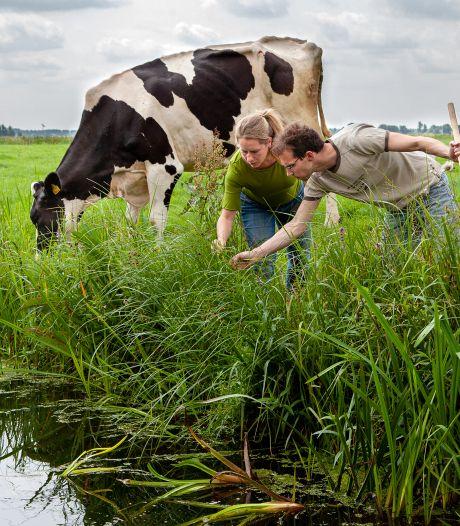 Boeren houden waterkwaliteit in de gaten: 'Mijn opa drinkt uit de sloot'