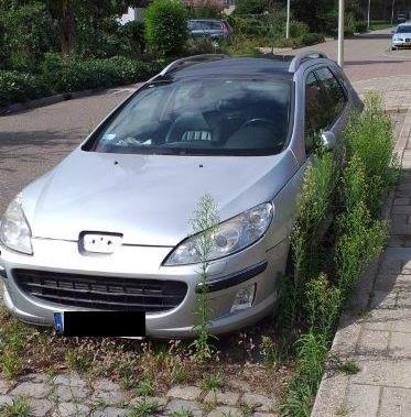 De Peugeot staat nu al sinds februari onaangeroerd in de Lievenshovelaan in Bergen op Zoom.
