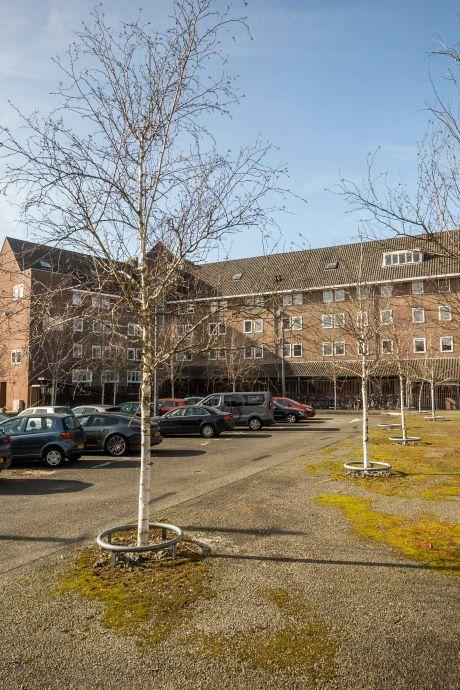 Luciferplein in De Bergen eindelijk op de schop; niet alle bewoners even blij