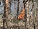 Grote heidebrand in natuurgebied in Schijf onder controle