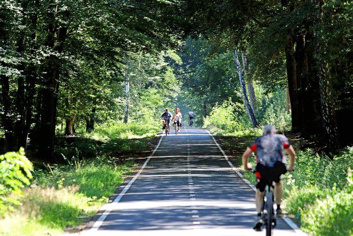 Fietsers op een deel van de fietsallee van 11 kilometer door de Chaamse Bossen.