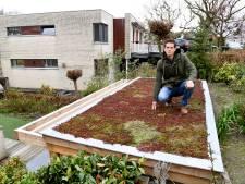 Met deze tips kun je gemakkelijk de tuin verduurzamen: 'Er is altijd ruimte voor groen'