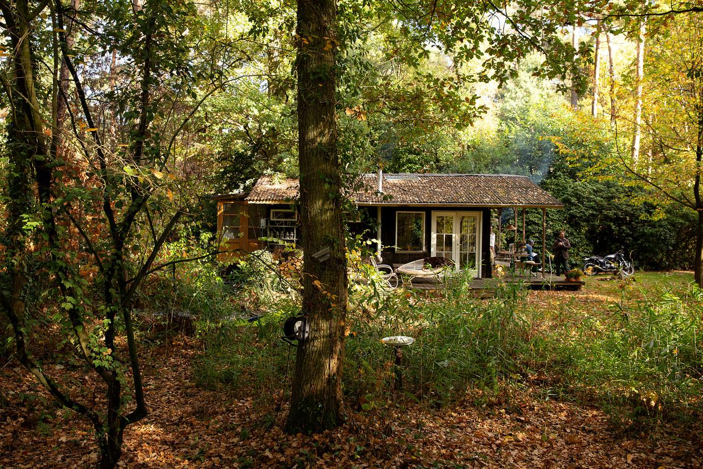 Het idyllisch huisje van Piet en Nathalie in de Kempische bossen. Beeld Diane Hendrikx