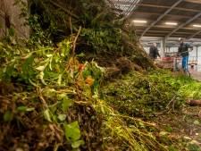 Hengelose hoveniers kunnen niet meer onbeperkt hun tuinafval wegbrengen