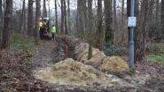 Gemeente investeert 130.000 euro in verlichting aan Parkheide