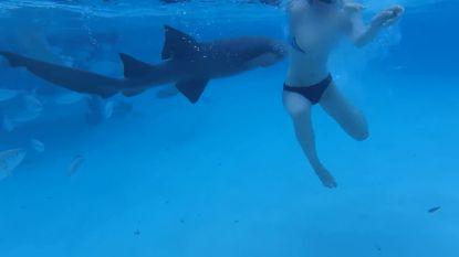 Vrouw zwemt voor haar leven nadat er tijdens snorkelen op huwelijksreis haai in haar arm hapt