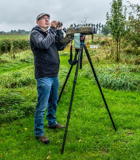Fotograaf Harvey spaart vogels met een afwijking: 'Iedereen weet wel dat ik een albino-freak ben'