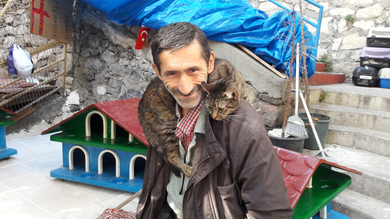 Kattenman Ali Tural heeft veel katten een naam gegeven, maar meestal volstaat het gerammel van de voedselbakjes om ze te lokken. Beeld Rob Vreeken / de Volkskrant