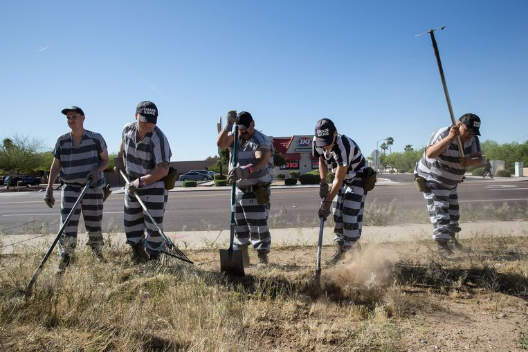 Gevangenen van de Maricopa County Jail wieden aan elkaar vastgeketend onkruid langs de weg. Beeld Photo News