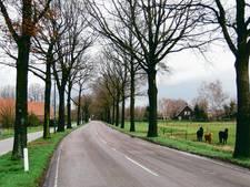 Weerstand tegen bouw aan Volkelseweg in Boekel