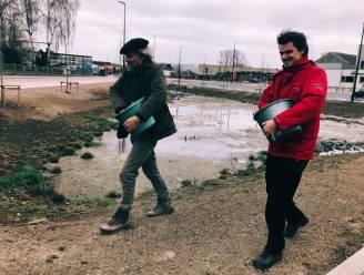 """ByeByeGrass en Bart Backaert dromen van 'grootste bloemenweide van Benelux': """"Laat je gazon groeien tot minstens 1 mei"""""""