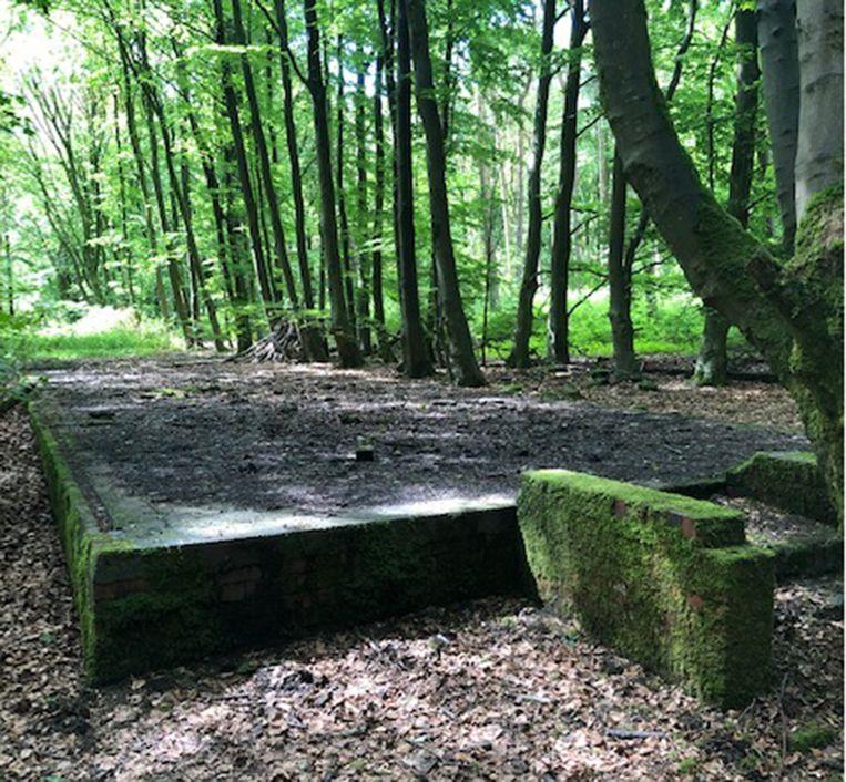 De archeologische site was begraven onder mos en bomen, en wordt anno 2019 voornamelijk gebruikt als een rustige uitlaatplaats voor honden.