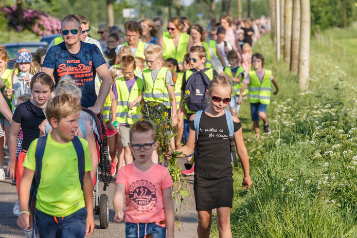 De wandelvierdaagse in Oirschot begint op dinsdag 5 juni. Inschrijving is via internet mogelijk.