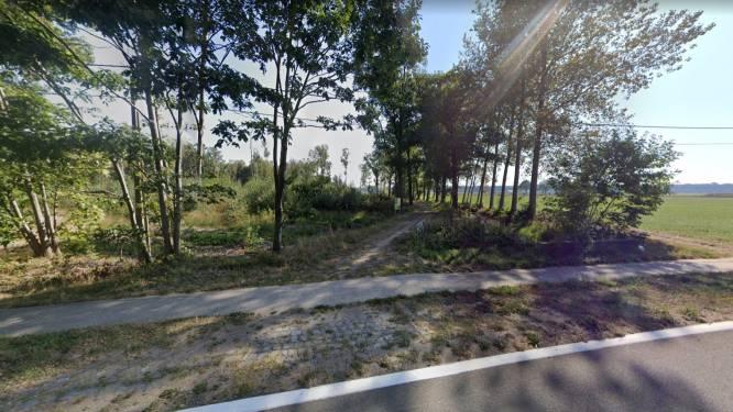 Wandelpad langs Hooibeek wordt breder en krijgt toegankelijkere bovenlaag