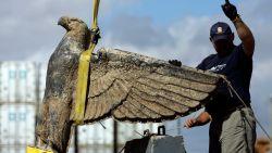 Uruguay moet nazi-adelaar verkopen