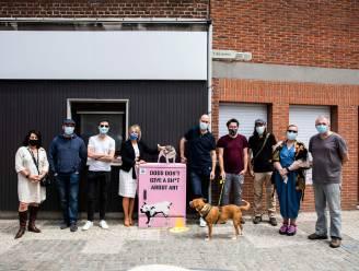 Kastkunst zorgt voor kleur in het stadscentrum van Sint-Truiden