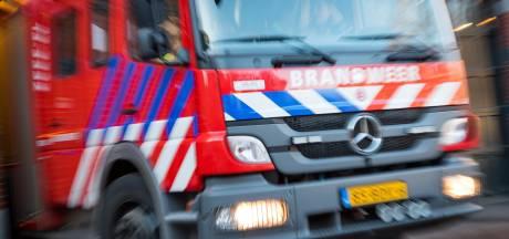 Slachtoffer lichtgewond na autobrand op trailer bij Nieuweroord