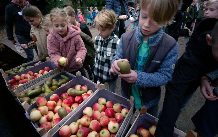 Op deze nationale groente- en fruitdag boeren en tuinders op verschillende plekken in Nederland kisten vol groente, fruit en andere producten uit.