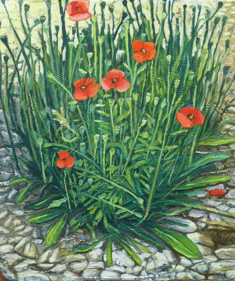 Mathieu Cherkit, Papaveraceae (2019), Albada Jelgersma Gallery. Beeld