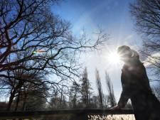 Wachtlijsten ggz steeds langer in Groene Hart: 'Lang wachten kan fataal zijn'