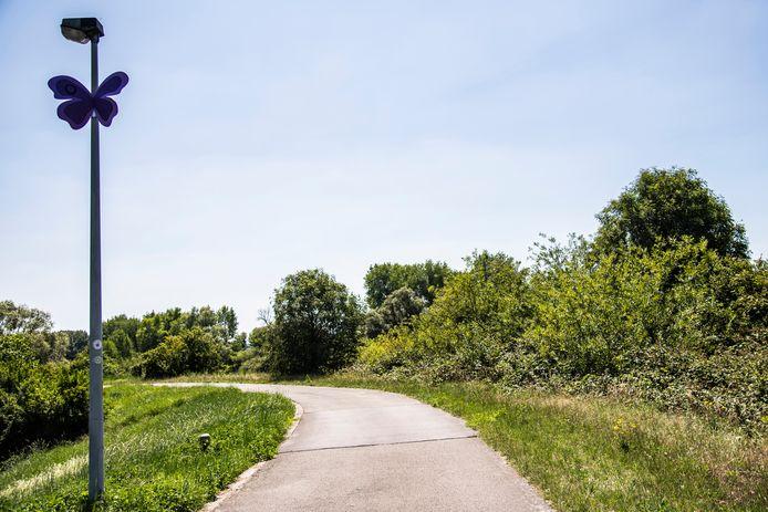 Vlinders wijzen je de weg doorheen Dendermonde en de deelgemeenten.