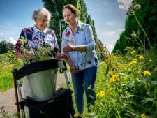 Anneke helpt Nel haar laatste dagen door: zo ziet het leven van een palliatieve vrijwilliger eruit