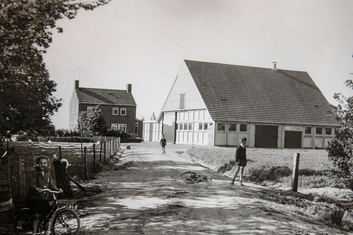 De boerderij van het gezin Steverink, begin jaren '60. Eigen foto