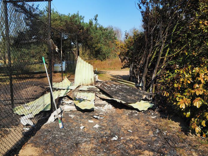 Tien dieren komen om bij aangestoken brand bij de Beekse Bergen.