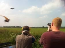 Verschil in geluid F35 en F16 als klein ervaren in Volkel