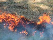 Omstanders blussen eigenhandig duinbrand in Noordwelle