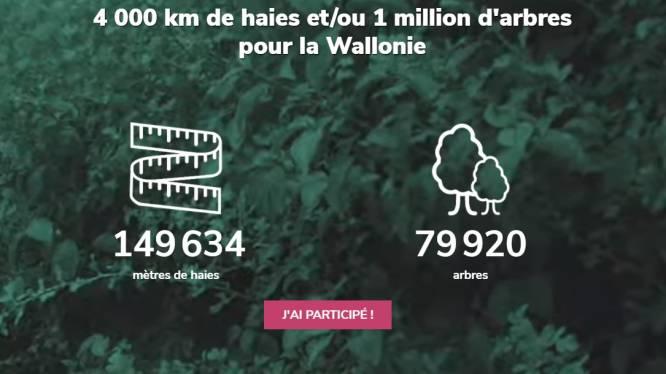 Eén meter haag per burger of een miljoen bomen: Wallonië lanceert 'Yes we plant'-challenge