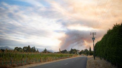 Nieuw-Zeeland getroffen door enorme bosbrand: al 2.000 hectare in de as gelegd, duizenden evacuaties