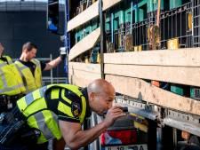 Dít is waarom jaarlijks honderden Albanezen hun leven wagen in de Rotterdamse haven