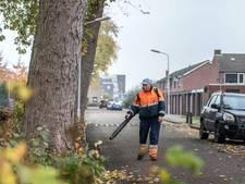 Kaalslag dreigt in Diepenbrockstraat Terneuzen