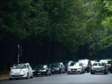 Le chauffeur arrêté au Bois de la Cambre déféré pour tentative de meurtre