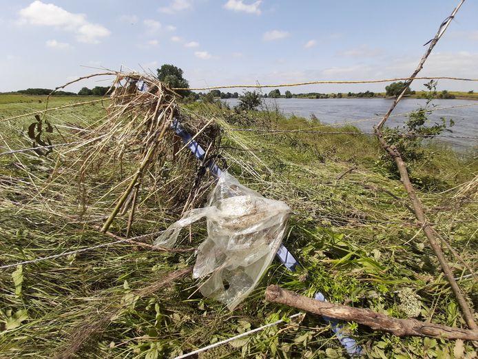 De vervuiling van de uiterwaarden, zoals hier ter hoogte van Hedikhuizen, valt erg mee. Hier en daar wat flarden plastic.