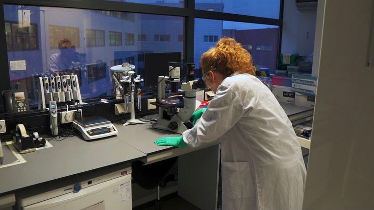 Een wetenschapper in het Janssen-laboratorium in Leiden. Beeld AP