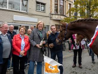 Jaarmarkt levert voor het eerst Dendermondse kampioen op