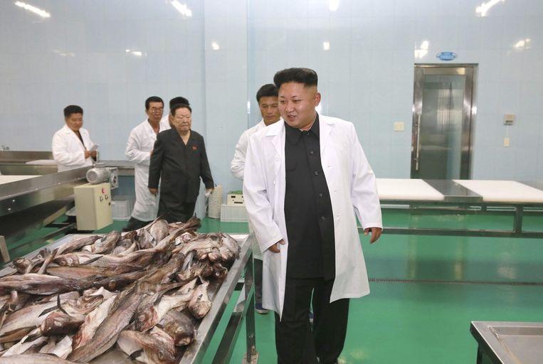 Kim Jung-un bezoekt een visfabriek. Beeld reuters