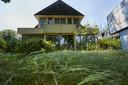 Het gras heeft al jaren de tijd om op flinke hoogte te groeien, aangezien de eigenaar van het pand geen onderhoud pleegt.