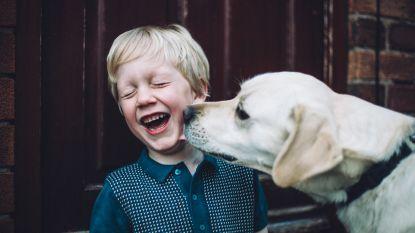 Hoe honden kunnen helpen bij kankerbehandelingen