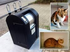 Twee katten 'als oud vuilnis' gedumpt bij ondergrondse container in Zwolle