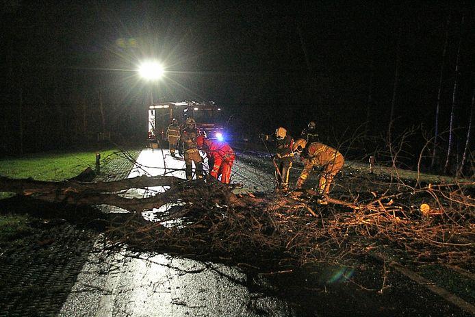 De brandweer verwijdert de omgewaaide boom op de N332.