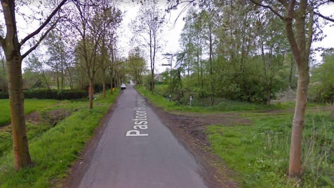 35-jarige Bornemnaar overlijdt na crash tegen boom in Pastoor Huveneersstraat