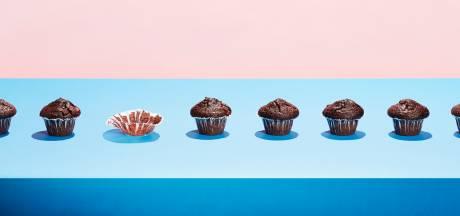 Cupcakes-actie van Rotary is goed voor twee shelterboxen