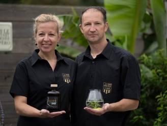 """Rupelstreek krijgt nu ook eigen Rupel Gin: """"12 kruiden gebruikt omdat rivier 12 kilometer lang is"""""""