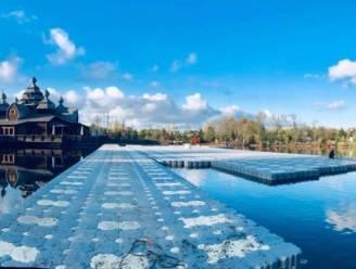 Pairi Daiza opent grootste drijvende ijspiste van Europa