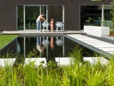 5 conseils pour entretenir votre étang de nage