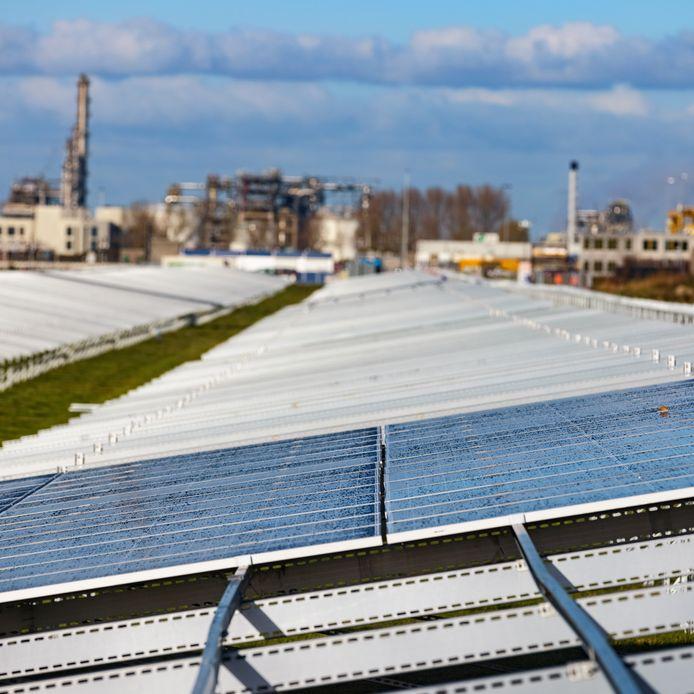 Foto uit 2020: zonnepark langs de Westelijke Randweg in aanbouw.