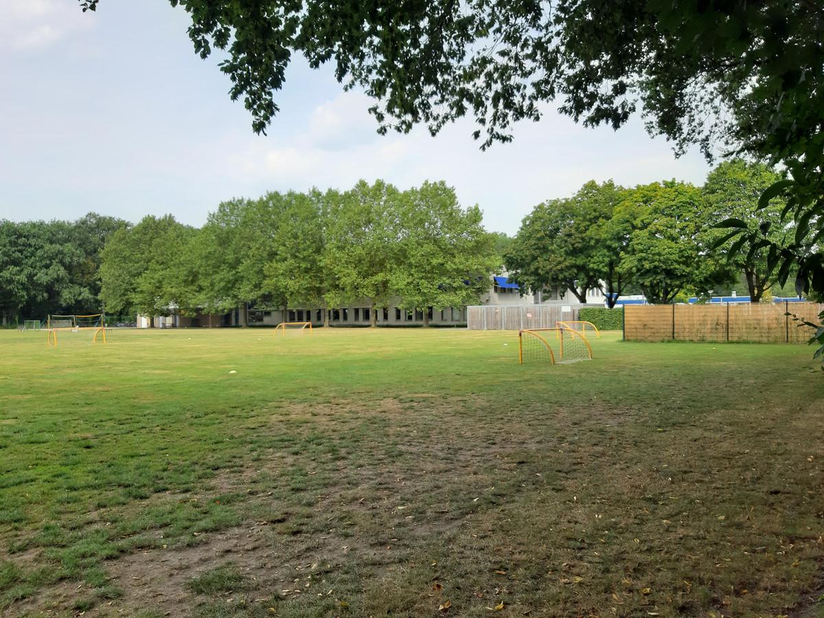 Een deel van het nieuwe Mill-Hillcollege zou op de huidige sportvelden kunnen komen.